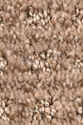 Mohawk Ultimate Image - Pecan Delight Carpet