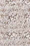 Mohawk Ultimate Image - Winter Delta Carpet