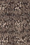 Mohawk Ultimate Image - Deep Sable Carpet