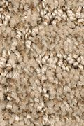 Mohawk Refined Interest - Woodland Carpet