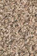 Mohawk Natures Elegance - Pebble Path Carpet