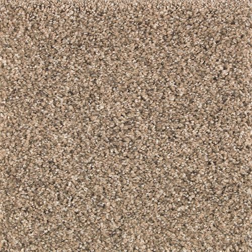 Mohawk Industries Nature S Elegance Woodland Carpet Las