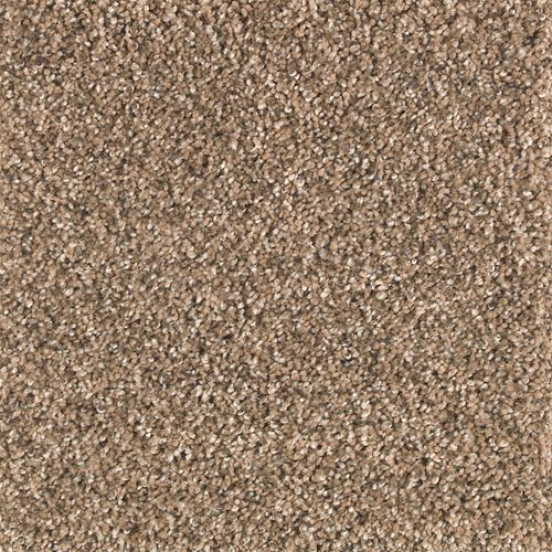 Rustic Splendor Autumn Brown 572