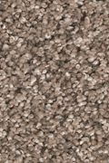 Mohawk Natures Elegance - Hazy Taupe Carpet