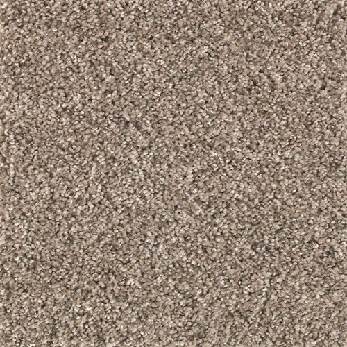 Rustic Splendor Weathered Grey 561