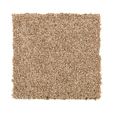 ProductVariant swatch small for Warm Nutmeg flooring product