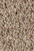 Mohawk Tonal Chic II - Saddle Brown Carpet