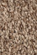 Mohawk Tonal Chic II - Desert Crackle Carpet