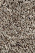 Mohawk Tonal Chic II - Hunting Boots Carpet