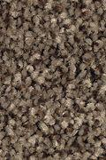 Mohawk Tonal Chic II - Party Mix Carpet