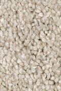 Mohawk Tonal Chic II - Coastal Fog Carpet