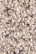 Mohawk Soft Sensations I - Hidden Treasure Carpet