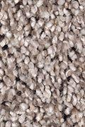 Mohawk Soft Sensations I - Studio Taupe Carpet