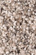Mohawk Soft Sensations I - Turkish Delight Carpet