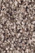Mohawk Soft Sensations I - Antique Earth Carpet