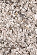 Mohawk Soft Sensations II - Almond Latte Carpet