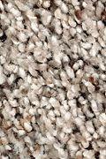 Mohawk Soft Sensations II - Warm Stone Carpet