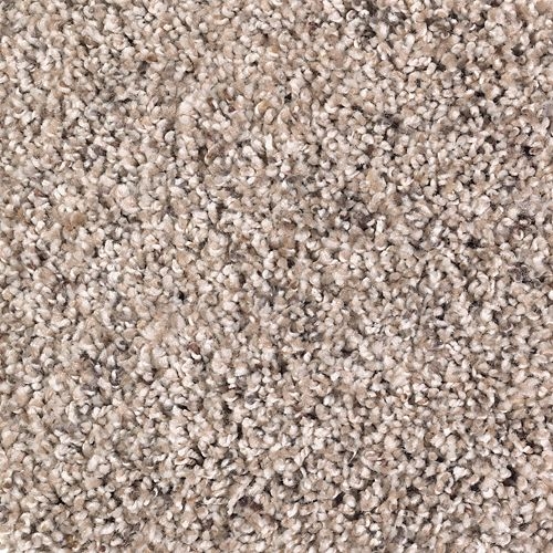 Mohawk Industries Soft Sensations Ii Warm Stone Carpet