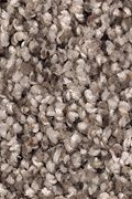 Mohawk Soft Sensations II - Antique Earth Carpet