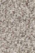 Mohawk Tonal Chic I - Taupe Illusion Carpet