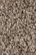 Mohawk Tonal Chic I - Truffle Carpet