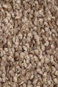 Mohawk Tonal Chic I - Desert Crackle Carpet