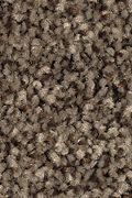 Mohawk Tonal Chic I - Party Mix Carpet