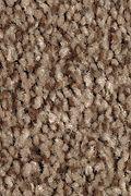 Mohawk Tonal Chic I - Highlander Carpet