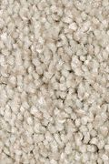 Mohawk Tonal Chic I - Coastal Fog Carpet