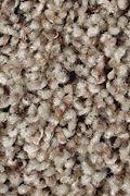 Mohawk Color Medley II - Winter Delta Carpet