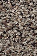 Mohawk Color Medley II - Sable Evening Carpet