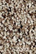 Mohawk Softly Elegant I - Autumn Ash Carpet