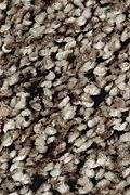 Mohawk Softly Elegant I - Sand Dollar Carpet