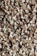 Mohawk Softly Elegant I - Dried Peat Carpet