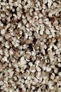 Mohawk Softly Elegant II - Autumn Ash Carpet