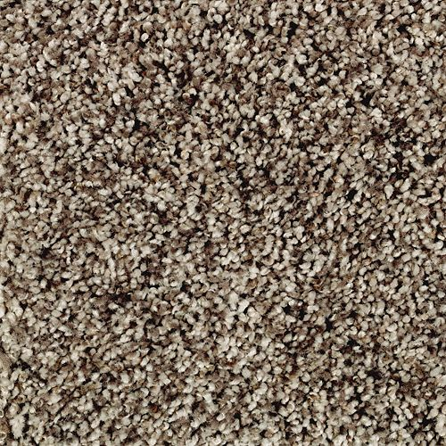 Mohawk Industries Softly Elegant Ii Autumn Ash Carpet