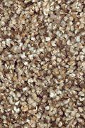 Mohawk Natures Luxury II - Cobble Path Carpet