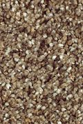 Mohawk Natures Luxury II - Dried Sage Carpet