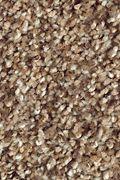 Mohawk Natures Luxury II - Worn Leather Carpet
