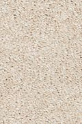 Mohawk True Harmony - Canvasback Carpet
