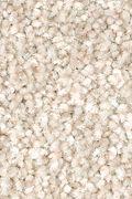 Mohawk True Harmony - Homespun Carpet