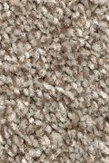 Mohawk True Harmony - Dakota Carpet