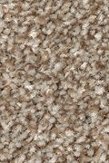 Mohawk True Harmony - Americana Carpet