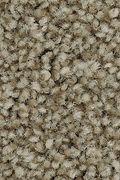 Mohawk True Harmony - Griffin Carpet