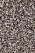 Mohawk True Harmony - Bittersweet Carpet
