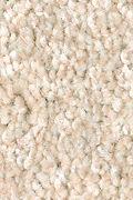 Mohawk True Unity - Canvasback Carpet
