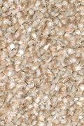 Mohawk True Unity - Harmony Carpet