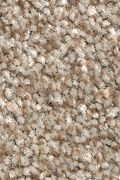 Mohawk True Unity - Shadywood Carpet
