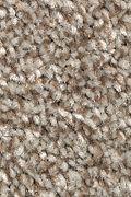 Mohawk True Unity - Dakota Carpet
