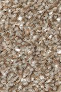 Mohawk True Unity - Americana Carpet